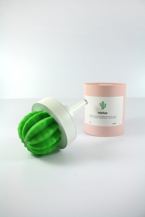 qushini-cactus-humidifier
